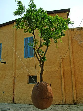 Tree growing in plant pot suspended in mid-air in the Old City of  Jaffa , Israel photo