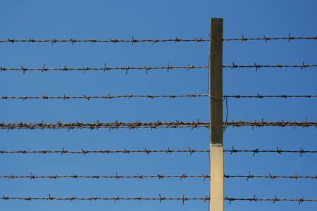 confined: barbed wires close to each other Stock Photo