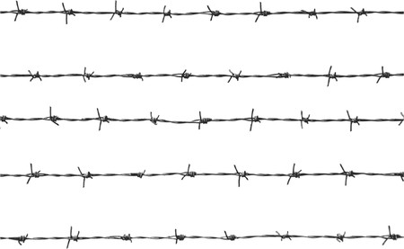 wire: five pieces of barbed wire