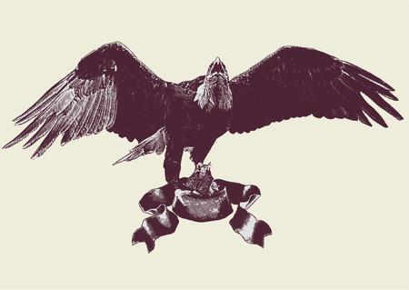 ファルコン: その羽を広げている n ワシのグラフィック ベクトル イラスト。ベクトル イラスト。