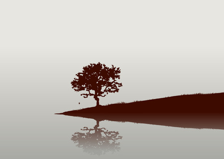 Silhouette of a tree and  Reflections on the  water.  Vector