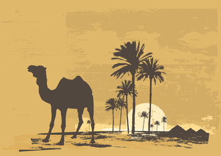 Vector ejemplo de la puesta de sol en el desierto africano. Camel y palma de la mano sobre fondo grunge