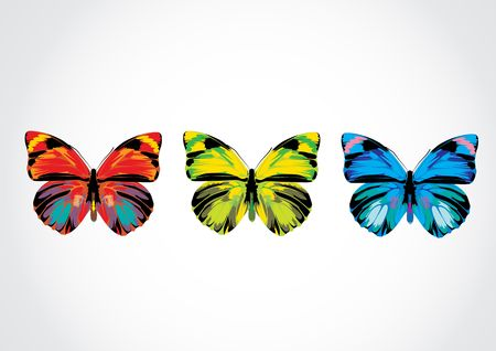 Vector illustration - Set of  Beautiful Brightly multicolored butterflies illustration
