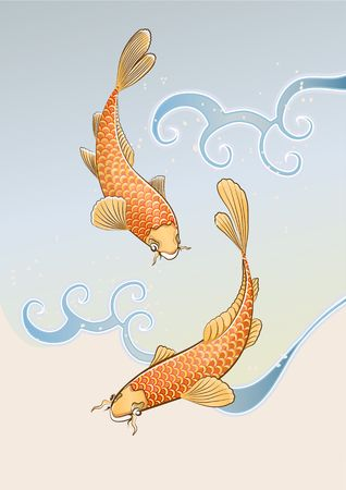 Vector illustration of two koi carps splashing in water and swiming around in a cool pond. Stock Illustration - 3453968