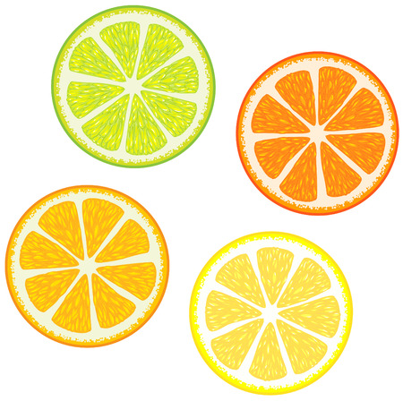 Vector illustration of Slices of citrus fruits: Orange, red grapefruit, lemon and lime. Great for making patterns Vector
