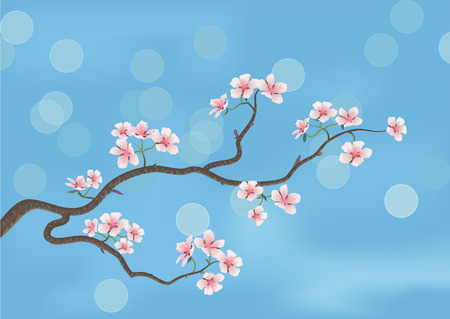 This is the illustration of a flowered sakura, japanese cherry tree