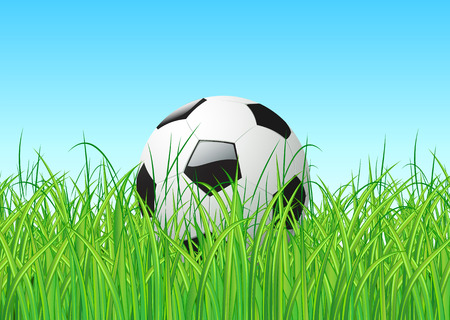 Vector illustration of soccer ball in the grass Illustration