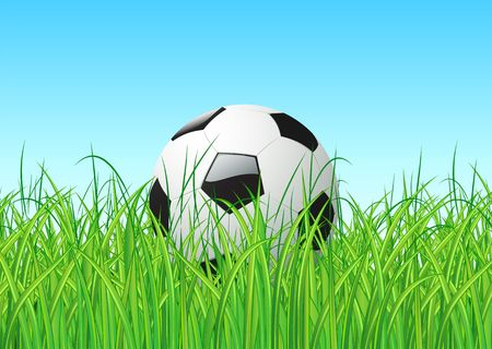 Vector illustration of soccer ball in the grass illustration