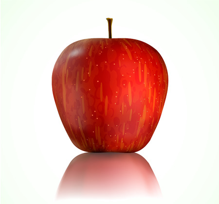 Vector illustration of detailed big shiny red apple Vector