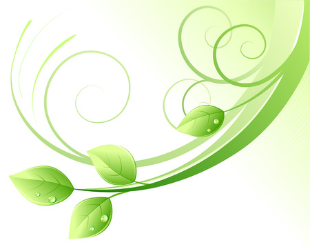 Vector illustration of green abstract background and leaves with water drops Vector