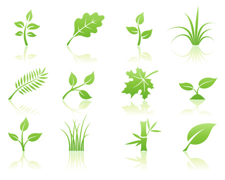 Vector illustration of green ecology nature floral icon set with reflections Vector