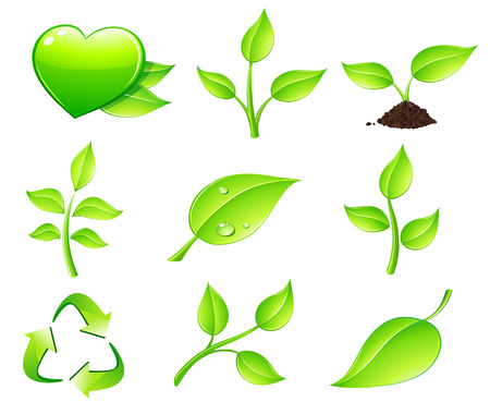 Vector illustration of green ecology nature floral icon set   Vector