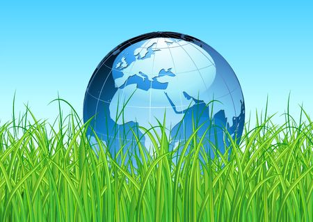 Vector illustration of blue Glossy Earth Map Globe on the green grass Stock Vector - 6789794