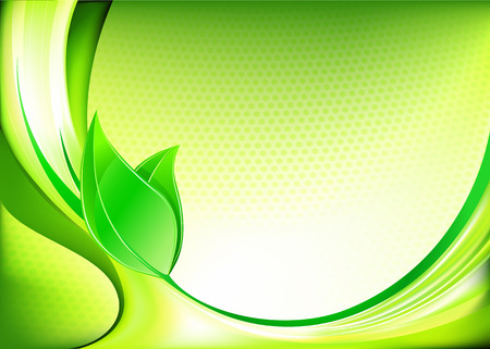 illustration of  fresh spring abstract background with green leaves  Vector