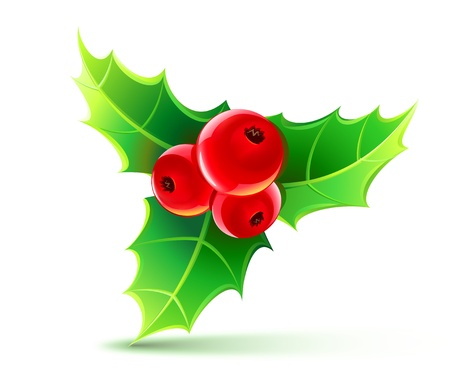 holy leaves: illustration of holly leaves and berries
