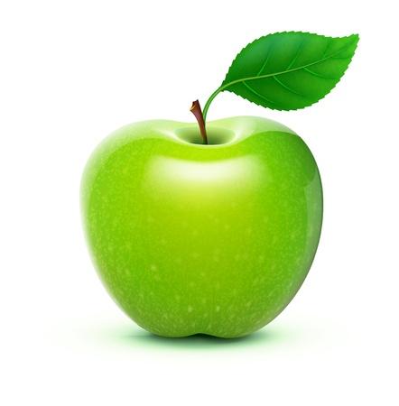 사과: 자세한 큰 반짝이 녹색 사과 그림 일러스트