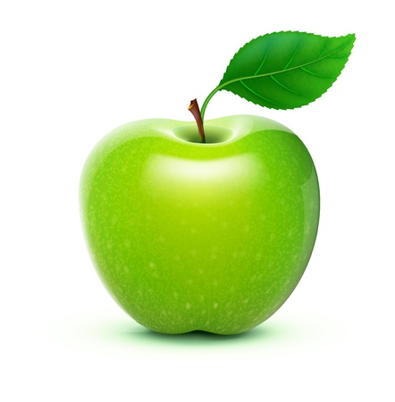 illustration of detailed big shiny green apple
