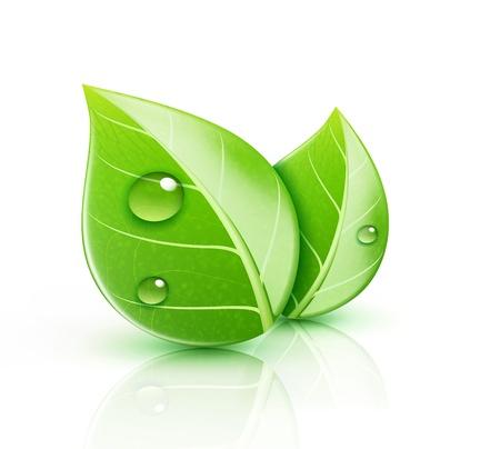 Ilustración vectorial de icono de la ecología concepto con hojas verdes brillantes Vectores