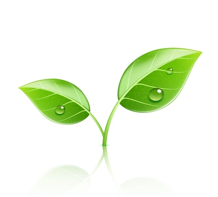 jednolitego: Ilustracji wektorowych ikony koncepcji ekologii z błyszczących zielonych liści