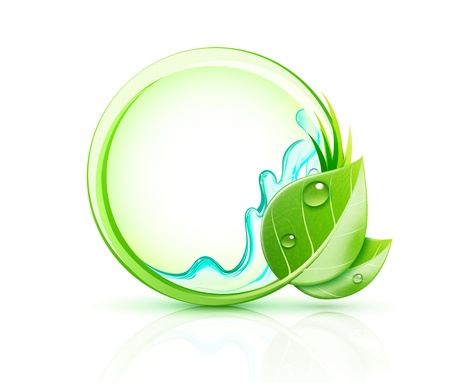 transparent drop: Vector illustration of green plant concept with green leaves and blank round frame