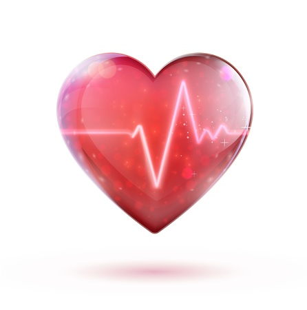 cardiac care: Vector illustration of red heart shape with electrocardiogram line.