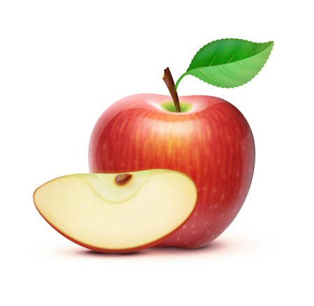 Vector illustration of detailed big shiny red apple Illustration