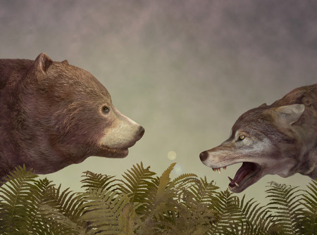 twosome: Wolf and Bear. Illustration Stock Photo