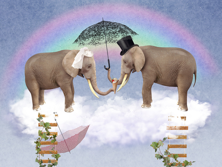 stairway to heaven: Two elephants in love with umbrellas. illustration