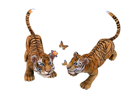 undomesticated: Two cute tiger cubs playing with butterflies. Illustration Stock Photo