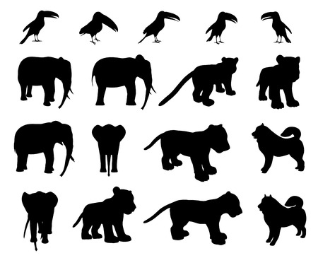 cub: Zoo animals collection -  elephant,  tiger cub, toucan, Eskimo dog Illustration