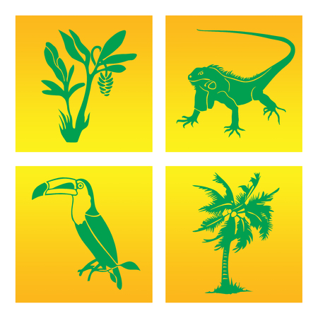 rainforest: The inhabitants of the rainforest in the graphic symbol. Toucan, iguana, banana and coconut palms Illustration