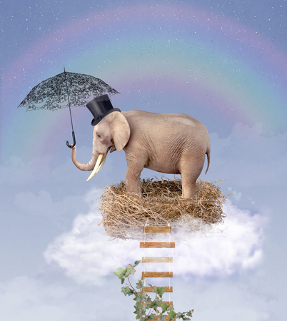 Elephant in the sky on a nest with an umbrella. Illustration Stock Photo