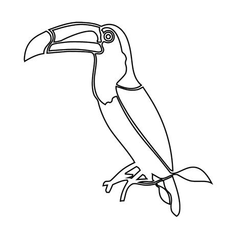 Toucan. Coloring book vector illustration