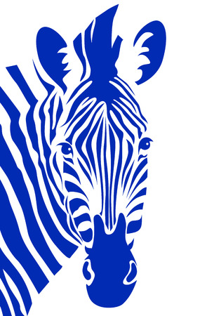 Zebra head. Vector illustration