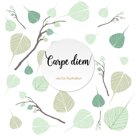 seize: Carpe diem. Latin aphorism Seize the day. Vector organic style card