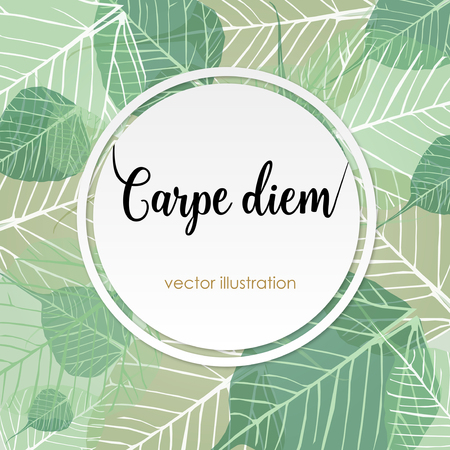 to seize: Carpe diem. Latin aphorism Seize the day. Vector organic style card