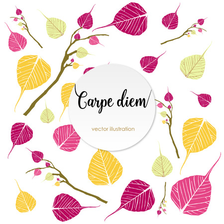 to seize: Latin aphorism Seize the day. Vector organic style card