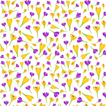 crocus: Vector floral pattern with crocus flowers. Illustration