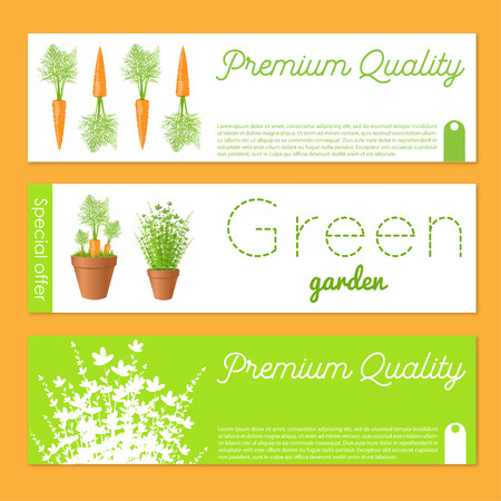 Set of vector banners with carrots.