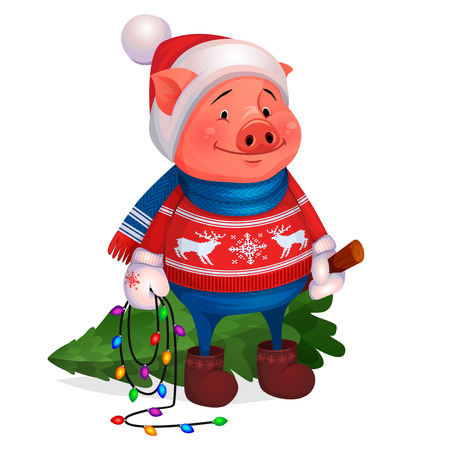 Funny illustration for the postcard Merry Christmas and Happy New Year of pig 2019, 2031. Cute Pig in red sweater with deer, mittens, scarf and hat, holds in hands felled Christmas tree, carries home.