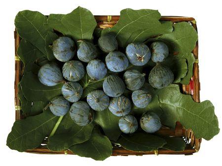 Freshly Picked Ripe Purple Figs in a Wicker Basket
