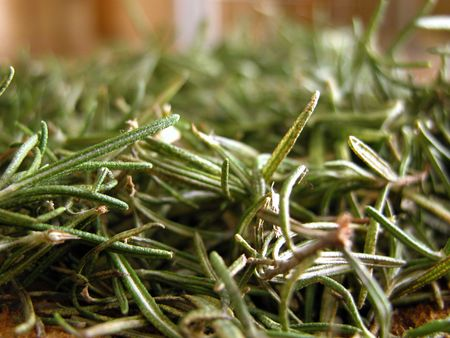 closeup view of freshly picked rosemary leaves on a wooden cutting board in the kitchen