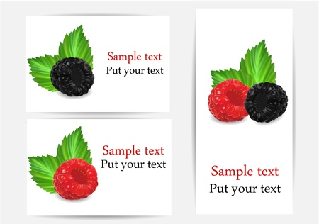 vector set of stickers with berries
