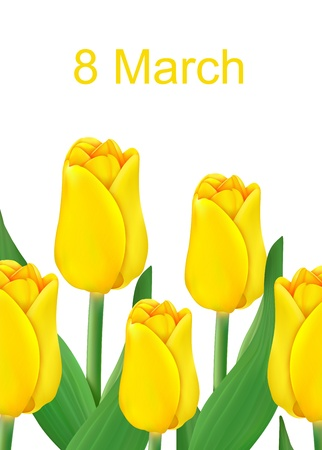 vector greeting card with bouquet of tulips, may be used as a Women s Day backdrop