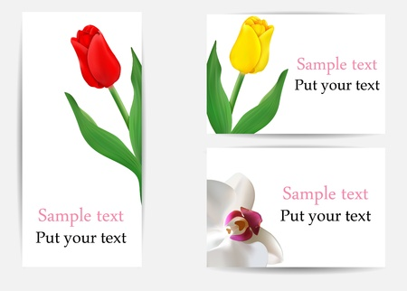 vector set of greeting cards with flowers  tulips and orchid  Illustration