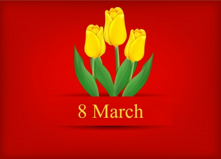 vector greeting card with bouquet of tulips, may be used as a Women s Day backdrop  Vector