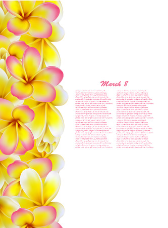 fragrant bouquet: Beautiful gift card with yellow and pink plumerias , may be used as a Woman\\\\