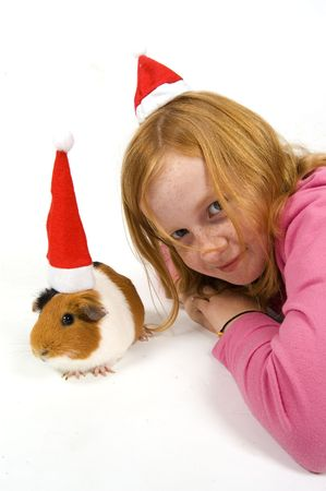 christmas guinea pig: cute little red hair girl together with her guinea pig wearing a christmas hat on white