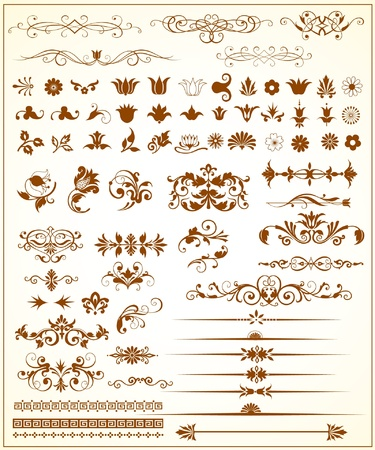 Vector Set of floral design elements Illustration