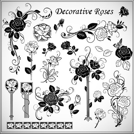 flores vintage: Vector set of decorative roses
